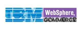ibm-websphere-natural-language-search